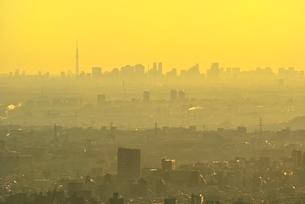 八王子城址山より朝焼けのスカイツリーと都心ビル群を望むの写真素材 [FYI02731978]