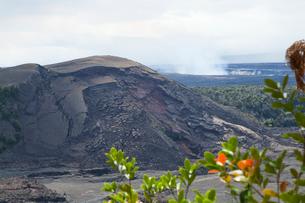 ハワイ島 キラウエアイキ展望台からプウプアイとハレマウマウ火口を望むの写真素材 [FYI02738068]