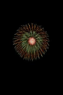 常総きぬ川花火大会 8号玉 侘太朴付三重芯菊先黄光露の写真素材 [FYI02738151]