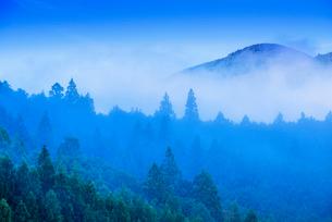 朝霧のツエノ峰の写真素材 [FYI02738154]