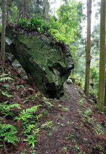 高野参詣道 黒河道のわらん谷赤石の写真素材 [FYI02738167]