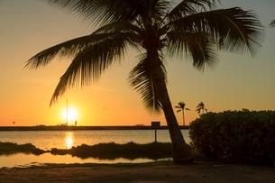 ハワイ島アナエホオマル・ベイの夕陽の写真素材 [FYI02738170]