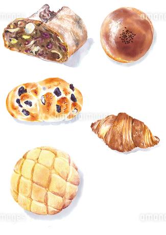 水彩で描かれた5種のパンのイラスト素材 [FYI02738237]