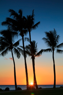 ハワイ島のマウナラニリゾートの夕陽の写真素材 [FYI02738329]