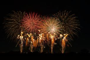 こうのす花火大会の音と光のコラボレーションの写真素材 [FYI02738386]