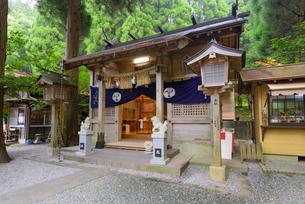 秋の荒立神社の写真素材 [FYI02738413]