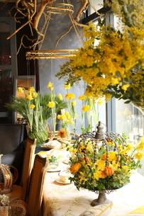 アカシアの花瓶活けと春の花のアレンジメントの写真素材 [FYI02738510]
