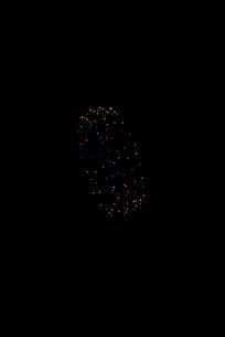いせはら芸術花火大会 創造花火でファッションリングの写真素材 [FYI02738599]