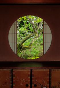 雲龍院悟りの窓の写真素材 [FYI02738729]