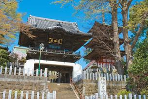 関東三弁天の一つ 布施弁天 紅龍山東海寺の楼門と三重塔の写真素材 [FYI02738778]