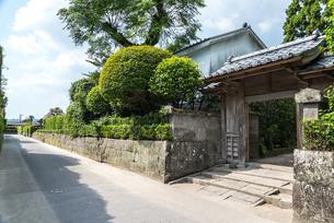 石垣と生け垣を見る知覧武家屋敷群の通りと門の写真素材 [FYI02738864]