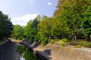 東京都立和田掘公園の写真素材 [FYI02739009]