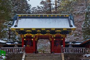 冬の日光山輪王寺大猷院の仁王門の写真素材 [FYI02739038]