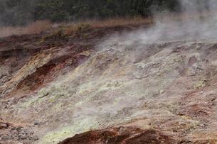 ハワイ島 キラウエア火山のサルファーバンクスの写真素材 [FYI02739041]