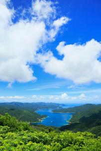 奄美大島 湯湾岳展望台より望む焼内湾の写真素材 [FYI02739080]