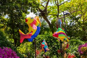 ガーデンズバイザベイの春節飾りの写真素材 [FYI02739165]