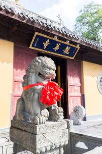 龍華寺、山門殿の狛犬の写真素材 [FYI02739214]