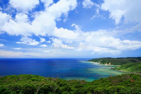 奄美大島 蒲生崎観光公園から望む笠利崎と東シナ海の写真素材 [FYI02739234]