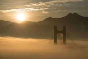 秩父公園橋と雲海の写真素材 [FYI02739266]
