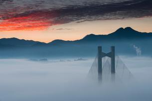 秩父公園橋と雲海の写真素材 [FYI02739272]
