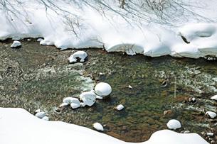 冬景の写真素材 [FYI02739277]