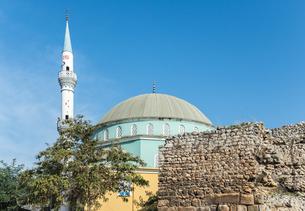 石垣と樹木越しにモスクのドームとミナレットを見るの写真素材 [FYI02739364]