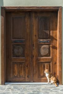 重厚な扉の前に座るネコの写真素材 [FYI02739375]