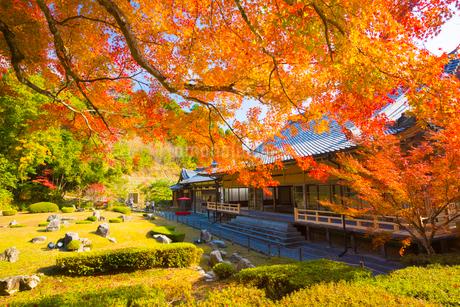 常栄寺の雪舟庭の写真素材 [FYI02739452]