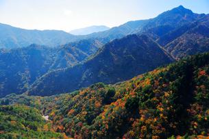 三重県 御在所岳の紅葉の写真素材 [FYI02739460]