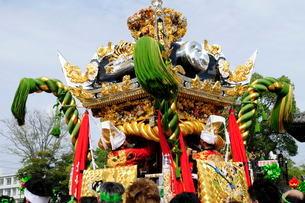 松原八幡宮境内にて灘けんか祭りの写真素材 [FYI02739535]