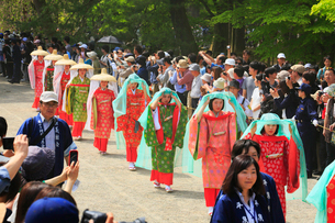 春の藤原祭りの写真素材 [FYI02739680]