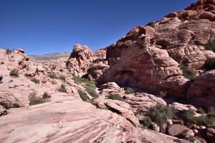 地層と色々な色の岩山が並ぶレッドロックキャニオン国立保護区の写真素材 [FYI02739682]