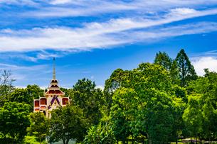 Wat Hin Mak Peng, Nong Khai, Thailandの写真素材 [FYI02739713]