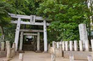 和泉熊野神社の写真素材 [FYI02739732]