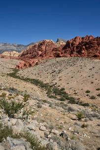 地層と色々な色の岩山が並ぶレッドロックキャニオン国立保護区の写真素材 [FYI02739783]