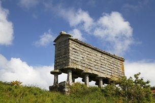 horreo (typical granary), Tourinan, Galicia, Spainの写真素材 [FYI02739839]