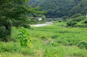 坂本龍馬脱藩の道 亀の甲舟着場の写真素材 [FYI02739958]