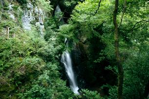 坂本龍馬脱藩の道 三杯谷の滝の写真素材 [FYI02739960]