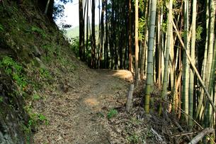 坂本龍馬脱藩の道 韮ヶ峠へ向かう道の写真素材 [FYI02739968]