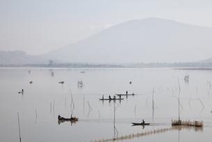 Lak Lake, boats, Central Highlands, Vietnamの写真素材 [FYI02740075]