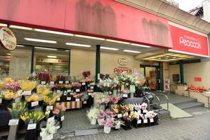 大丸ピーコック魚藍坂店の写真素材 [FYI02740187]