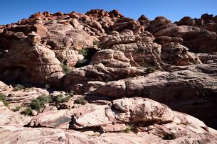 地層と色々な色の岩山のレッドロックキャニオン国立保護区の写真素材 [FYI02740199]