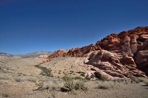 地層と色々な色の岩山が並ぶレッドロックキャニオン国立保護区の写真素材 [FYI02740333]