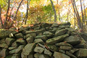 女神岳城跡の石垣の写真素材 [FYI02740602]