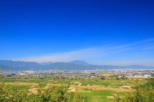 妻女山展望台から望む川中島古戦場と飯縄山の写真素材 [FYI02740974]