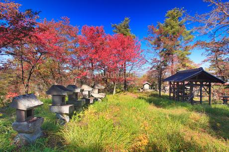 紅葉の陣場山城跡の神明宮の写真素材 [FYI02741059]