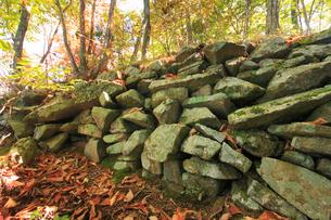 女神岳城跡の石垣の写真素材 [FYI02741075]