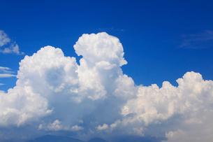 丸子城跡の二の郭跡から望む入道雲の写真素材 [FYI02741105]