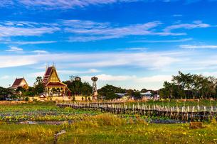 タイ ケーダム・ブリッジの写真素材 [FYI02741263]