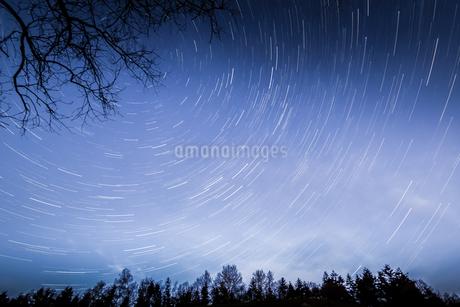 Meteor shower in blue sky above treetops, Naestved, Denmarkの写真素材 [FYI02741965]